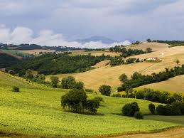 Landscape of Marche at Arcevia